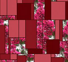 Crape Myrtle Art Rectangles 8 by Christopher Johnson