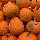 Pumpkins by Lou Wilson