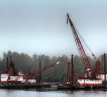 Mist along the Duwamish by Sue Morgan