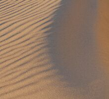 Textured sand by DominoDude