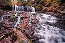 Mohawk Comes Alive After The Autumn Rain by Gene Walls