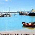 A Sunny Day in Tassie by Margaret Stevens