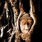 Buddha in a tree by qrabat