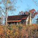Old Southern Home by RickDavis