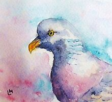 Wood Pigeon  by Laura Moore