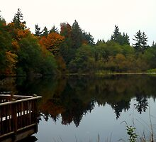 Autum Reflections Two by RdwnggrlDesigns
