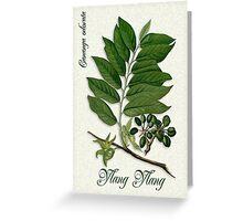 Botanical illustration of Ylang Ylang Greeting Card