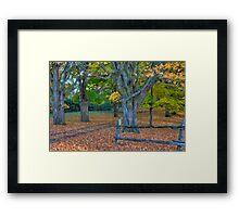 Fallen Leaves II  Framed Print