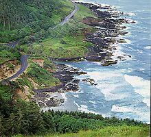 Cape Perpetua, Oregon Coast by Vern Treat