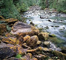 Staircase Rapids, Skokomish River, Olympia National Park, Washington by Vern Treat