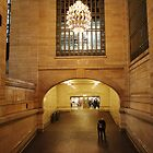 Grand Central Terminal by VDLOZIMAGES