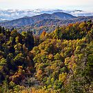 Smoky Mountain Color II  by photodug