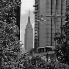 Empire State Bldg B&W by VDLOZIMAGES