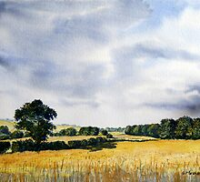 Fields of Gold by Glenn Marshall