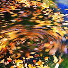 Turning Leaves by Roupen  Baker