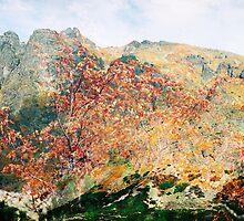 High Tatras in Fall XV. by Zuzana Vajdova