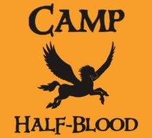 Camp Half-Blood - PERCY JACKSON - Pegasus by LovelyOwls