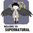 welcome to supernatural by pagalini