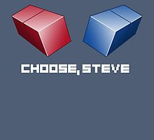 Choose, Steve by cs3ink