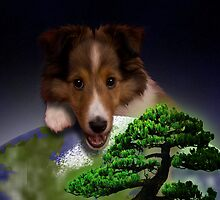 Happy Arbor Day Sheltie by jkartlife
