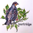 Partridge. ('A partridge in a pear tree')  by Elizabeth Moore Golding