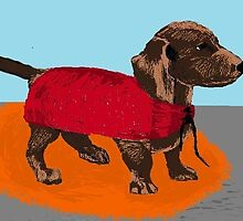 Maude the dachund by margaretfraser