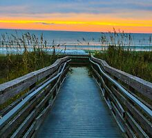 Walkway to Paradise  by donaldhovis