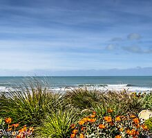 Garden by the sea by Roshud Photography