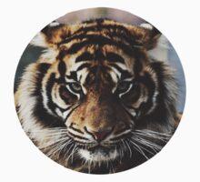 Tiger Face by mkcvte