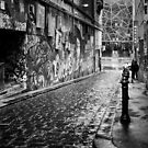Melbourne's Hosier Lane (Black & White) by jamjarphotos