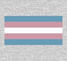 Transgender Pride Flag by cadellin