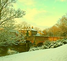 Bishop's Bridge, Norwich, England by Joanna Rice