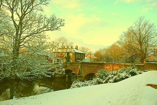 Bishop's Bridge, Norwich, England by Joanna Rice