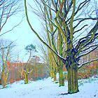 Winter Trees on Mousehold Heath, Norwich, England by Joanna Rice