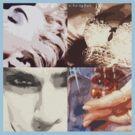 Madonna Pop Art by PheromoneFiend