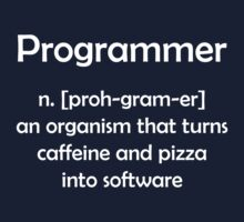 Programmer definition by funkybreak