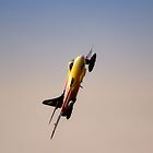 Miss Demeanour  by Nigel Bangert