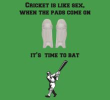 Cricket is like sex... by bigredbubbles6
