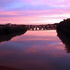Cordoba Roman Bridge at Sunset by Sue Ballyn