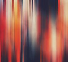Autumn by Patrick Horgan