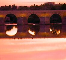 Cordoba Roman Bridge Sunset 2 by Sue Ballyn