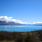 Lake Pukaki - New Zealand by Nicola Barnard