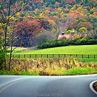 country roads by Tgarlick