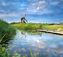 Charming windmill by Olha Rohulya