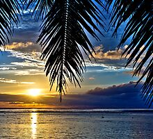 Paradise Sunset by Adrian Alford Photography