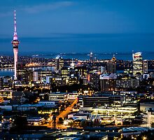 mt eden view by davidprentice