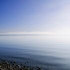 Misty Lake Neuchatel by Imi Koetz