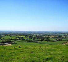 English Countryside - UK by Nicola Barnard