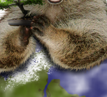 Celebrate Earth Day Everyday Raccoon Sticker
