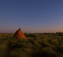 Last Light On The Anthill by Adam Brice